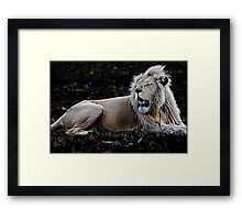 MGM Presents  Framed Print