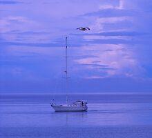 Blue World by Les Wazny