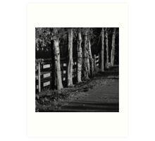 Black and white fence Art Print