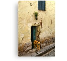 Cusco, Peru 2098 Canvas Print