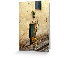 Cusco, Peru 2098 Greeting Card