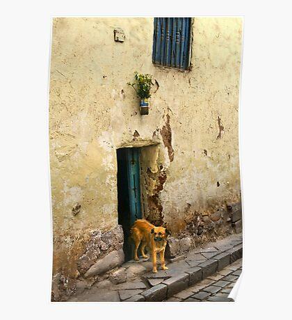 Cusco, Peru 2098 Poster