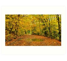 Golden Canopy Art Print
