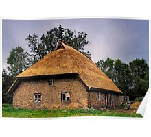 Thatched Roof Poster