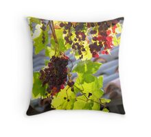 Gainey 2 Throw Pillow