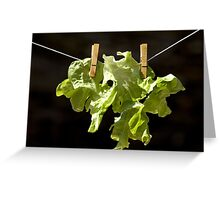 Drying salad Greeting Card