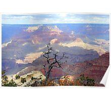 Grand Canyon South Rim 1 Poster
