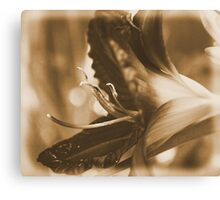 Having a Lily fun... Canvas Print