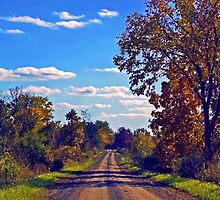 Road of Color by cherylc1