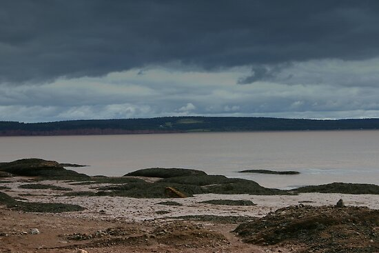 Fundy...Tide's Out! by Alyce Taylor