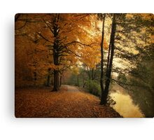 A Leafy Path Canvas Print
