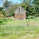 Old Shed by Robert Winslow