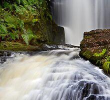 McLean Falls by Craig Bullock