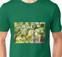 Pear tree ripe fruits cluster  Unisex T-Shirt