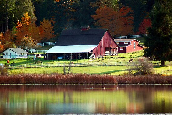 Red Barn & Autumn Reflections by Tori Snow