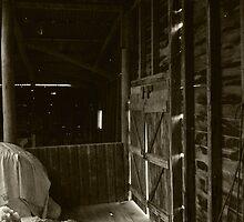 Bleeding Light - interior of a run down sheep shearing shed by splitsie