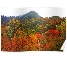 THE CHIMNEY TOPS,AUTUMN Poster