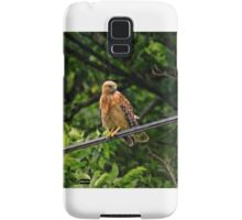Hawk on The Wire Samsung Galaxy Case/Skin