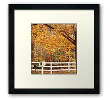 Fall Day Framed Print