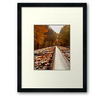 Autumn Tracks 3 Framed Print