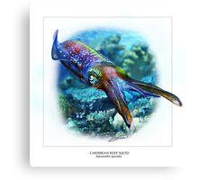 CARIBBEAN REEF SQUID 6 Canvas Print