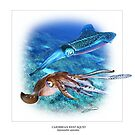 CARIBBEAN REEF SQUID 7 by DilettantO