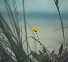 Lone yellow soldier by RPDubs