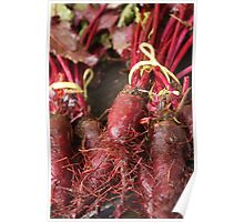 Beetroot Poster