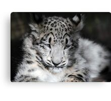 Hara - Time to Rest Canvas Print