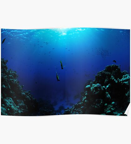 Beneath the Sea Poster