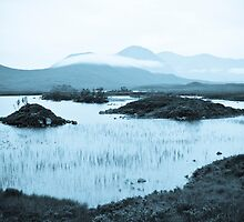 Winters Morn by wildscape