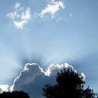Beautiful Storm by WildestArt