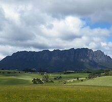 Majestic Mt Roland - Sheffield, Tasmania by Gemma Thompson