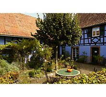 A Garden in Alsace Photographic Print