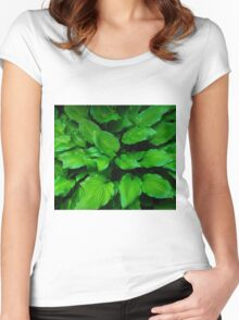 Green Foliage Women's Fitted Scoop T-Shirt