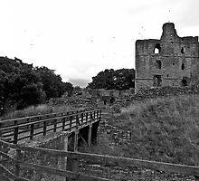 To The Castle! by Ryan Davison Crisp
