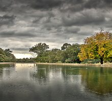 Roll on clouds and golden leaves by tristanmillward