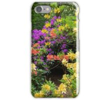 The Woods in Spring. iPhone Case/Skin