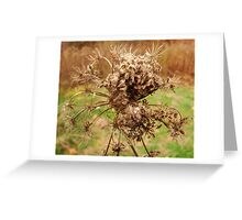 Decay Greeting Card