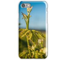 Young Vines iPhone Case/Skin