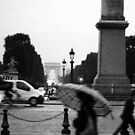 Blurred  by STEPHANIE STENGEL   STELONATURE PHOTOGRAHY