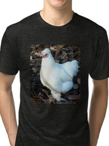 White feathers Tauranga New Zealand Tri-blend T-Shirt