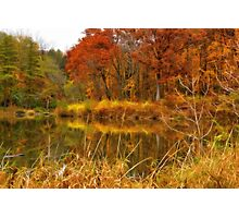 Sterling Pond Photographic Print