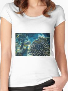 Maldivian coral reef Women's Fitted Scoop T-Shirt