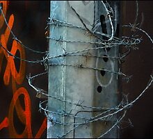 Barb Wire by Albert Sulzer