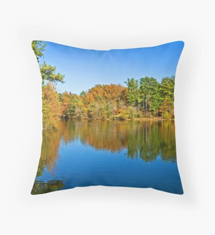 Autumn Colors in Tennessee Throw Pillow