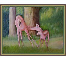 Deer Love! Photographic Print