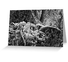 Freezing falls Greeting Card