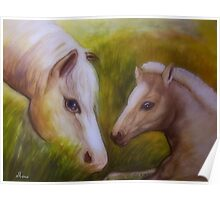 Mother and baby foal Poster