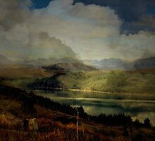 The Glen: The Evening, the Castle & the Redstart. by Kenart